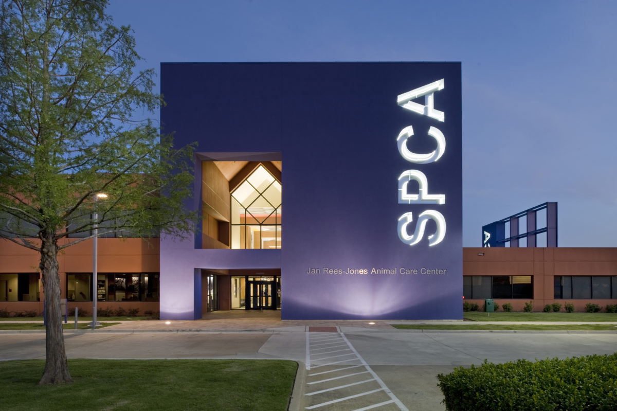 Dallas SPCA Dallas TX